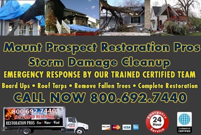 Mount Prospect Storm Damage Cleanup