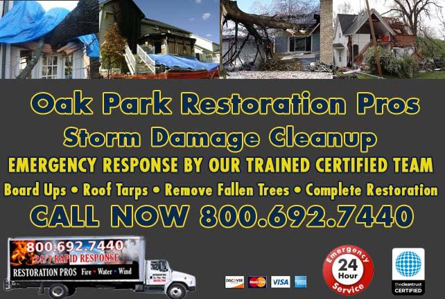 Oak Park Storm Damage Cleanup