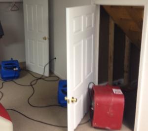 basement dryout